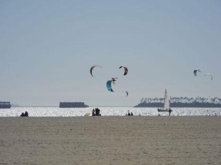 今日のロングビーチは強風が吹いていてカイト・サーフィンや凧揚げをやる人が多くいた。最近の凧ってカイト・サーフィンと同じ形をしているのね。