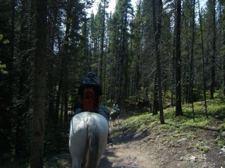 乗馬ツアーで山をめぐる。