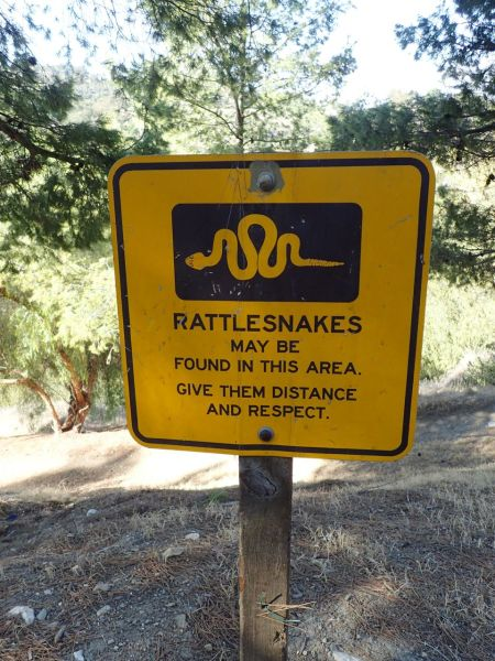 このあたりのトレイルではガラガラヘビが生息している。くれぐれもトレイル以外の草むらなどに踏み込まないように。