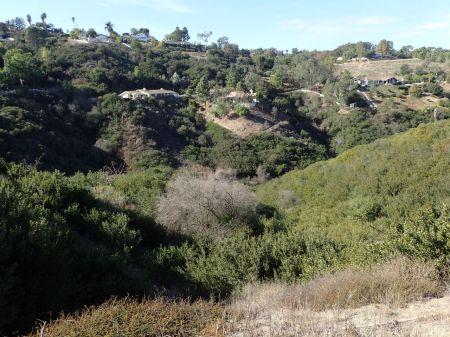 トレイルがあるのはこんな谷間
