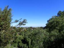 丘の上から街側を眺める